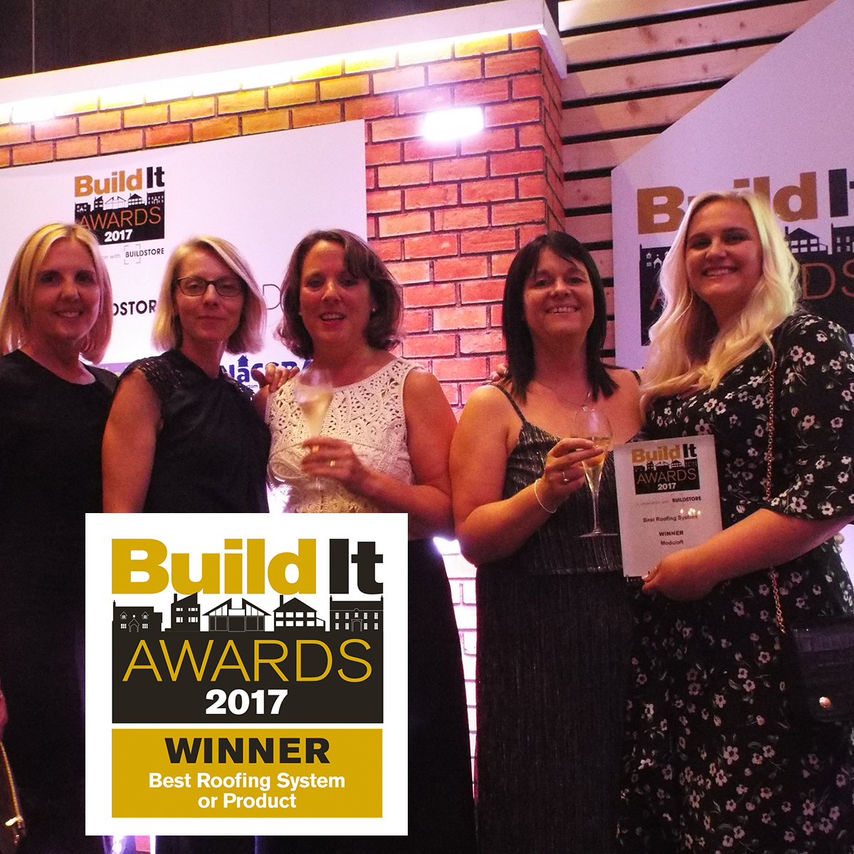 loft conversion awards win: Build It awards Winner for best roofing system